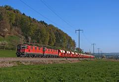 SBB RE4/4''' 11354 (maurizio messa) Tags: re44iii zürich cargo switzerland svizzera nikond90 mau bahn ferrovia freighttrain fret guterzuge treni trains railway railroad