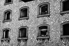 Les vigies (vedebe) Tags: noiretblanc netb nb bw monochrome humain people urbain rue ville city street fenêtre architecture