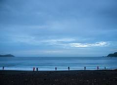 Picket Fence (buddythunder) Tags: wellington newzealand blue dawn coast ocean calm early predawn anglers fishermen spacing beach personalspace