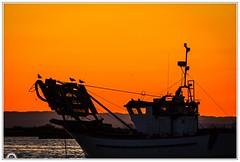 """""""Llegando a buen puerto"""" (Gerkraus) Tags: marinero pescador crepúsculo oceano besosyabrazos canon silueta"""