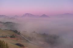Misty dawn in the Pieniny (Dariusz Wieclawski) Tags: nikon nikond700 nikondigital d7002470mmf28 2470mm28 dawn sunrise leegrad mistymorning mist fog spring