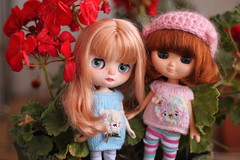 Conjuntos Knit is good (Meigaland) Tags: miso is dolls good knit grace judy knitted parson pyon shiky odecco