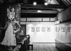 Gallery #3, May 2013 (Dave Green Photo) Tags: leica bw film mono blackwhite gallery kodak nt trix may exhibition analogue nationaltrust m6 blackgrey laycockabbey 2013