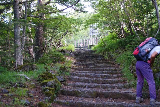 これを登りきると富士の森とはお別れ。|