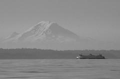 Mt. Rainer (Digital Biology) Tags: blackandwhite bw white black ferry landscape blackwhite washington nikon rainier pugetsound bainbridgeisland