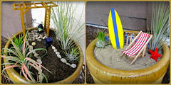 Fairy Garden Surprise! (Bennilover) Tags: friends gardens fun happy miniatures friendship small surfing pots surprise benni doorsteps fairygardens