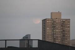 Big Moon Rising Over Brooklyn (Walking Off the Big Apple) Tags: nyc brooklyn fullmoon eastriver supermoon perigeefullmoon