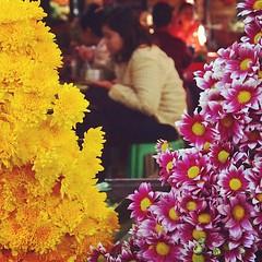 ใช้ดอกไม้แทนกรอบ | Flower Frame