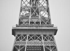 arriba no siempre estás solo (quino para los amigos) Tags: paris france tower eiffel francia dsc0231