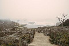 Lands End Fog (Travel and Snap) Tags: sf sanfrancisco california sanfranciscobayarea oceanbeach fujifilm travelphotography xpro1