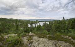 Norway I (Ivo Vastre) Tags: mountain nature berg forest landscape pentax k20 ivo kongsberg knutehytta k20d vastr