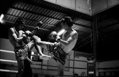 Muay Thai (Jochen Abitz Photography) Tags: leica bw film sports thailand 50mm nikon kodak trix 1600 400 thai mp analogue 135 boxing coolscan muay summilux khao lak