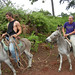 Riding donkeys to the neighbor's farm to pick coffee - Bolivia and the Galapagos Islands cross-cultural