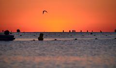 Sunrise Port Grimaud (Quentin Carlier) Tags: light sunset summer sun france sexy water st port sunrise canon golf de eos soleil nikon marine d south sunny tropez le attractive grimaud quentin oiseaux sunnt carlier d700 d7000