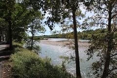 Edworthy park back to princes island, the trip home (davebloggs007) Tags: canada calgary river alberta bow pathway