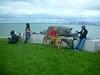 DeerIsland06-03-2012015