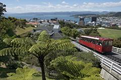 Wellington-Cable Car (scrumpy 10) Tags: newzealand nikon wellington cablecar aotearoa neuseeland d800 jacqualine scrumpy10