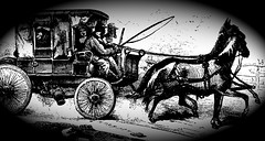 1855年2月的Strother.carriage.p259,Flickr上的Jim Surkamp