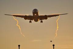 [07:26] AA0106 JFK-LHR (A380spotter) Tags: cloud vortex london water wake heathrow landing trail finals condensation boeing arrival approach americanairlines 777 aa vapour moisture lhr aal 773 shockwave egll futurebrand approachlights 300er 27l runway27l shortfinals jfklhr aa0106 anewamerican n725an ship7lj