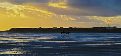 Taking A Stroll (David Chennell - DavidC.Photography) Tags: wirral merseyside hilbreisland wirralsunset wirralcoast