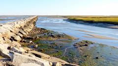 Low Tide at the Breakwater (mahler9) Tags: provincetown capecod massachusetts landsend lowtide breakwater jaym mahler9 andantecomodofotos