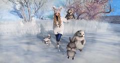 I ♥ Animals     Snapshot_52483 (Larcoco ::C'est la vie!::) Tags: k ufo secondlife chemistry zenith maitreya zzang larcoco beetlebones xiaj