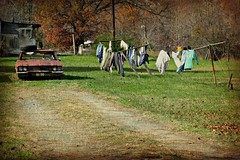BACK WOODS BACK YARD (NC Cigany) Tags: nc rust country clothesline heap junkcar 5091