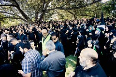 10th Annual Ashura Procession  - Australia 25
