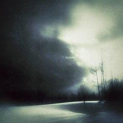 The Mystery never leaves (Cathrine Halsor) Tags: trees winter nature beauty landscape ethereal dreamy themystery mindful anamcara johnodonohue earthdreaming feelingaliveinthepresenceofbeauty