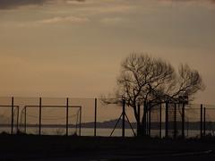 DSCF5829 (Talisman1983) Tags: tramonto albero controluce calcio milazzo isole