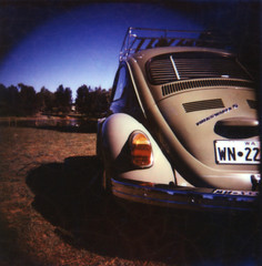 Beetle (The Instant Camera Guy) Tags: 120 polaroid back holga conversion 600 instant modified custom cb70 gtlr