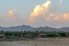 Hatta Mountains  -  (  mjmo55) Tags: carnival trees sunset sea moon mountains macro art tourism beach nature water birds animals fruit museum clouds creativity fire photo dubai village gull son emirates vase pitcher filming qatar hatta cornish                         waqif                   drops