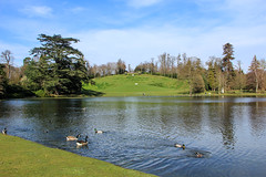 The Amphitheatre (Jicardee29 (trying to catch up)) Tags: lake water birds gardens spring day cloudy views nationaltrust claremontlandscapegardens brokenclouds canon60d