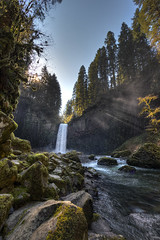 Abiqua Falls, Oregon (Mike Scofield) Tags: trees oregon forest moss falls watefall abiqua