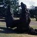 """<br /><span style=""""font-size:0.8em;"""">LEOPOLDO NOVOA ESCULTURA Y MURAL  DE LAS TERMAS DE ARAPEY  EN SALTO URUGUAY</span> • <a style=""""font-size:0.8em;"""" href=""""http://www.flickr.com/photos/114402629@N08/13384243153/"""" target=""""_blank"""">View on Flickr</a>"""
