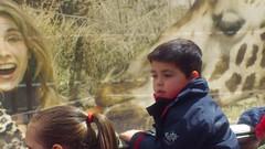 orvalle-infantil-zoo4