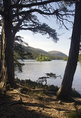 Loch an Eilein, the lake with the island, Spey Valley, Scottish Highlands (Jim 592) Tags: lake loch freshwater scotland scottish highlands spey valley cairngorms caledonian forest great eilein