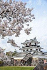 Shiroishi Castle (白石城 ) (AnotherSaru - Limited mode) Tags: 白石市 白石 shiroishi japan nippon japanese spring castle 2016 kevinfrates travel asia 白石城 shiroishijo shiroishicastle miyagiprefecture 宮城県 miyagiken tōhokuregion 東北地方 tohokuchiho sakura cherryblossoms mutsuprovince 陸奥国 mutsunokuni katakuraclan 片倉氏 katakurashi boshinwar