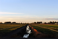 Trench Water (niKonJunKy22) Tags: trench water ditch irrigation irrigating field landscape photography pipes wheels grass onions sky color farm ngc d700 wideangle natural nature light sunset nikon nikkor