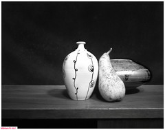 Pear and vases (DelioTO) Tags: 4x5 aph09 autaut blackwhite canada closeup f307 fomapan100 march ontario pinhole stilllife winter