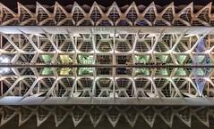 C.A.C Museo Principe Felipe (Explore 28-03-2017) (Txeny4) Tags: valencia cac reflejos noche night canon 1022mm txeny4 arquitectura simetria calatrava