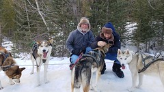 Snowy Owl Sled Dog Tours, Canmore, Alberta Canada (renedrivers) Tags: rchan415 renedrivers winter banffnationalpark snow mountain snowyowlsleddogtours