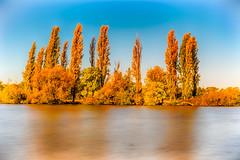 Autumn colours (Theresa Hall (teniche)) Tags: australia canberra lakeburleygriffin nikkor nikkor2485 nikon nikond750 samyang teniche theresa theresahall afternoon autumn color colour filter lake landscape longexposure pleasant pretty samyang14mm trees water