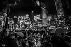 Shibuya Crossing on a Rainy Day (Greg Tokyo) Tags: shibuya japan tokyo 2017 crossing bw umbrellas rain