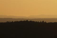 Further than the horizon (crowfoto) Tags: landscape orange trees silhouettes silhouette tuebingen tübingen hornisgrinde schwarzwald blackforest