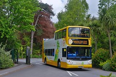 Golden Hop (Better Living Through Chemistry37) Tags: route122 hop122 goldenhop opentopbuses buses busessouthwest busesuk transport transportation vehicles psv publictransport stagecoach stagecoachdevon stagecoachsouthwest wa05mgx 18303 chirpy paigntonzoo