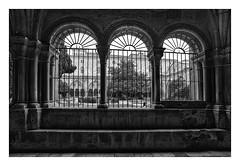 CATEDRAL DE TARRAGONA-Claustro  (Cataluña-España ) (RAMUBA) Tags: catedral seo tarragona cataluña españa claustro cloister gotico gothic