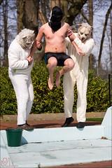 25-8055 (Ijsberen-Boom) Tags: boom ijsberen kzcyboom doop swim zwemclub zwemmen vlaanderen belgium
