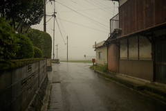 Post box. (Yasuyuki Oomagari) Tags: rain rainy road street post rural country countryside fog nikon zeiss distagont225