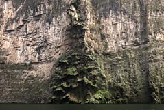 Tuxtla Canyon del Sumidero Christmas Tree Falls-3